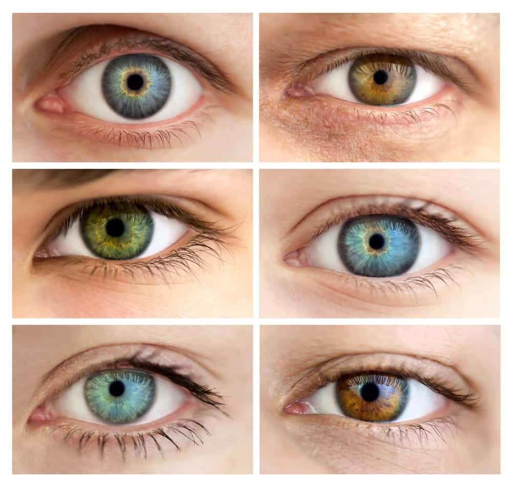 Collage with 6 Images of Eyes of Different Colors