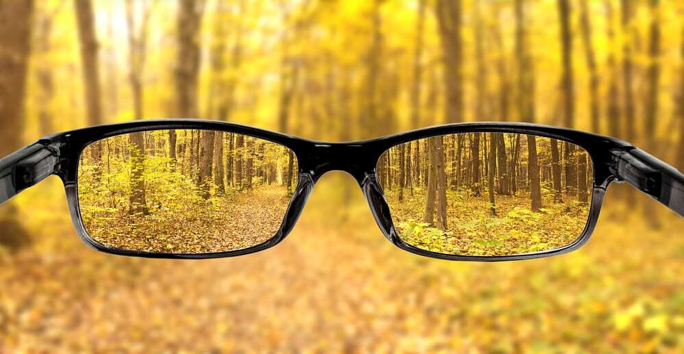 Glasses Held Out in Front of Autumn Woods
