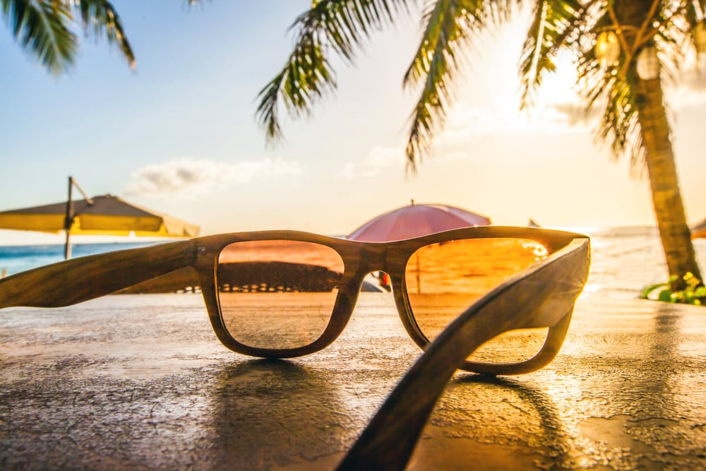 Sunglasses sitting on the beach, palm tree and umbrellas in background